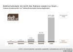 Kakao-Kosten und Margen bei Schokolade